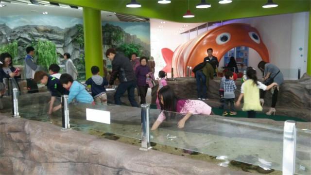 어류생태학습관 터치폴 전경.jpg