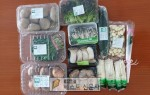 경북도, 학교급식용 친환경농산물 판매 나서,   ,   ,개학연기에 따라 생산농가 어려움 …
